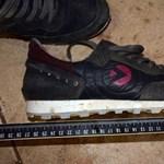 Holttestet találtak a Dunában