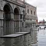 Áradás Velencében: búvár úszott át a Szent Márk téren
