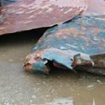 Véletlenül megtaláltak egy 500 éves, elsüllyedt hajót