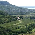 Fiatal füredi borászt vertek agyon a hétvégén Badacsonyban