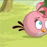 Veszélyes fegyver a legújabb Angry Birds karakternél