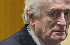 Súlyosbították Radovan Karadzic ítéletét, élete végéig börtönben marad