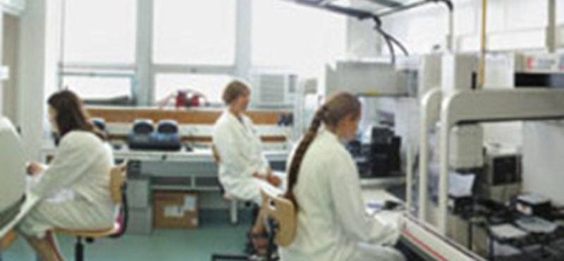 Nem tudja finanszírozni kutatásait az Semmelweis Egyetem