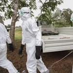 Óriási biznisz az ebola