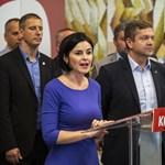 Az MSZP Pest megyei szervezete csak azért is tartott tisztújítást