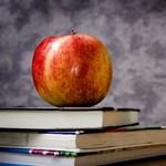 Felmérés: ez a magyar tanárok legnagyobb hibája
