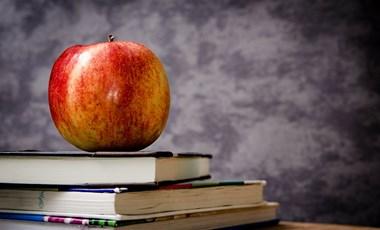 Idén is félmillió gyerek jut friss zöldséghez, gyümölcshöz és tejtermékhez az iskolaprogramokban