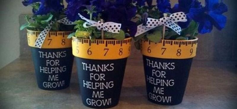 9af9308550 Közoktatás: Ezekért a ballagási ajándékokért minden tanár hálás lesz ...