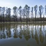 Feljelentést tesz a Dunában úszó molos olajoshordók miatt a Párbeszéd