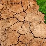 2050-re úgy megváltozik a klímánk, hogy visszasírjuk majd a régi időket