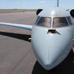 10 megdöbbentő tény a madarak okozta repülőgép-balesetekről