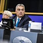 A Néppárt agytrösztjének igazgatója nem hiszi, hogy a Fidesz megváltozik