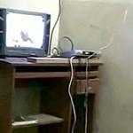 Fotók a tévéző bin Ladenről és legfiatalabb feleségéről