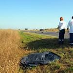 Előzés közben halt meg egy szolgálaton kívüli rendőr Csongrádnál