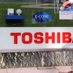 Szertefoszlottak a Toshiba atomerőmű-álmai