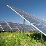 Erre senki se gondolt: milyen hatással van a környezetre egy napelemfarm?