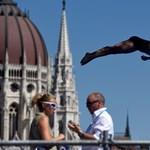 Vizes vébé és hasító turizmus: a kormánynak hisz vagy a számoknak?