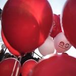 Elkapták a férfit, aki megharapott egy MSZP-s aktivistát