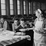 Kihez lehet fordulni az iskolai étkeztetéssel kapcsolatban?