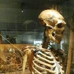 Ma is hatnak a vérfertőző neandervölgyiek gémutációi
