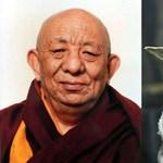 Megtalálhatták a szerzetest, akiről Yoda mestert formázták - fotó