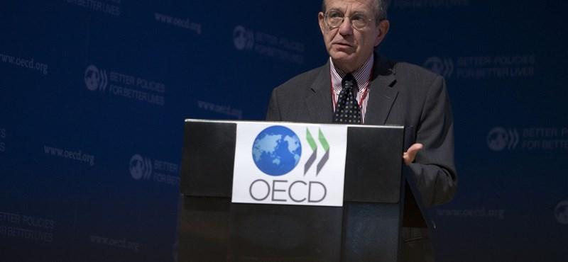 Nem túl sok jót mondott a világgazdaságról az OECD