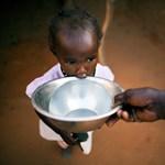 Szudán: az olajállam, ahol éheznek