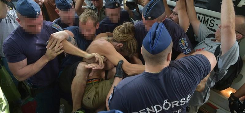Több száz rendőr szorította ki a ligetvédőket