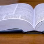 Újabb ingyenes alkalmazásokat ajánlunk: fordítók, amelyek offline is működnek
