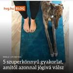 Újabb olvasnivalók a hvg.hu-n: itt vannak a blogok