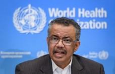 WHO-főigazgató: A koronavírus világjárvánnyá is válhat