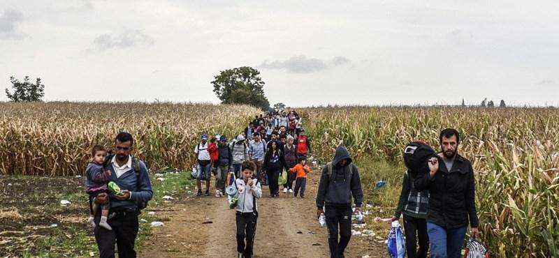 Bécsben a menekültek mellett tüntettek