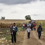 Ultimátumot kaptak a horvátok Szerbiától a menekültügyi EU-csúcs előtt - összefoglaló