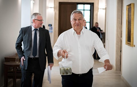 Orbán Viktor kovászos uborkájának az árnyékában kezdtünk új életet